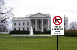 Shouldn't the White House be a gun-free zone?